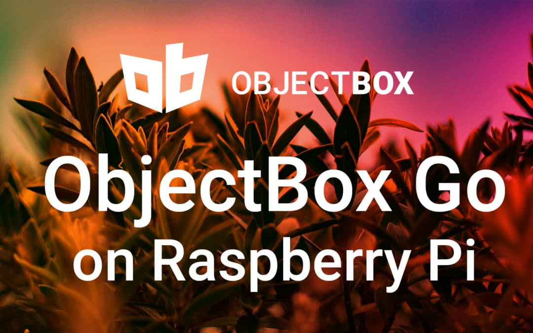 How to set up ObjectBox Go on Raspberry Pi